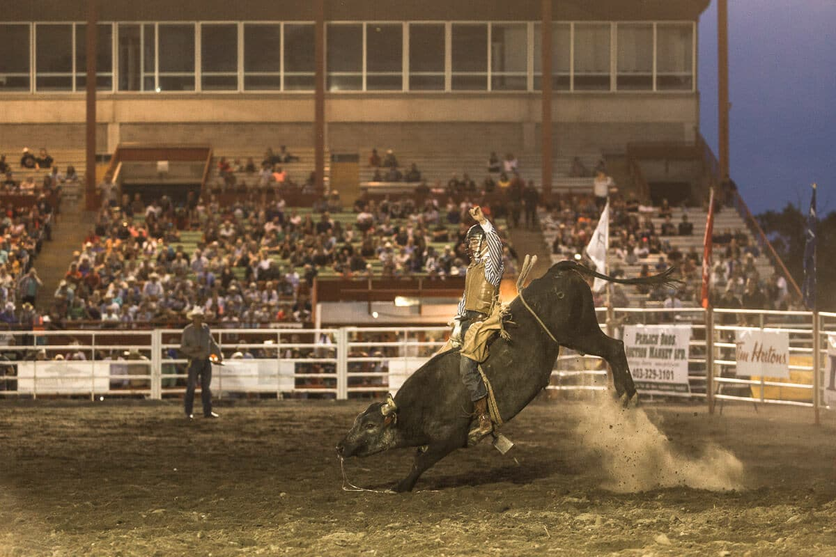 Bull rider and bucking bull in the ring at a rodeo