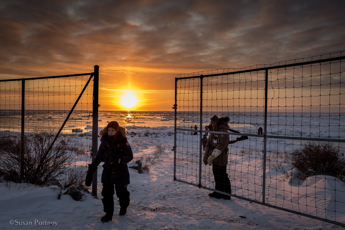 Fence at Seal River | What it's like to be on Canada's only Walking Polar Bear Photo Safari