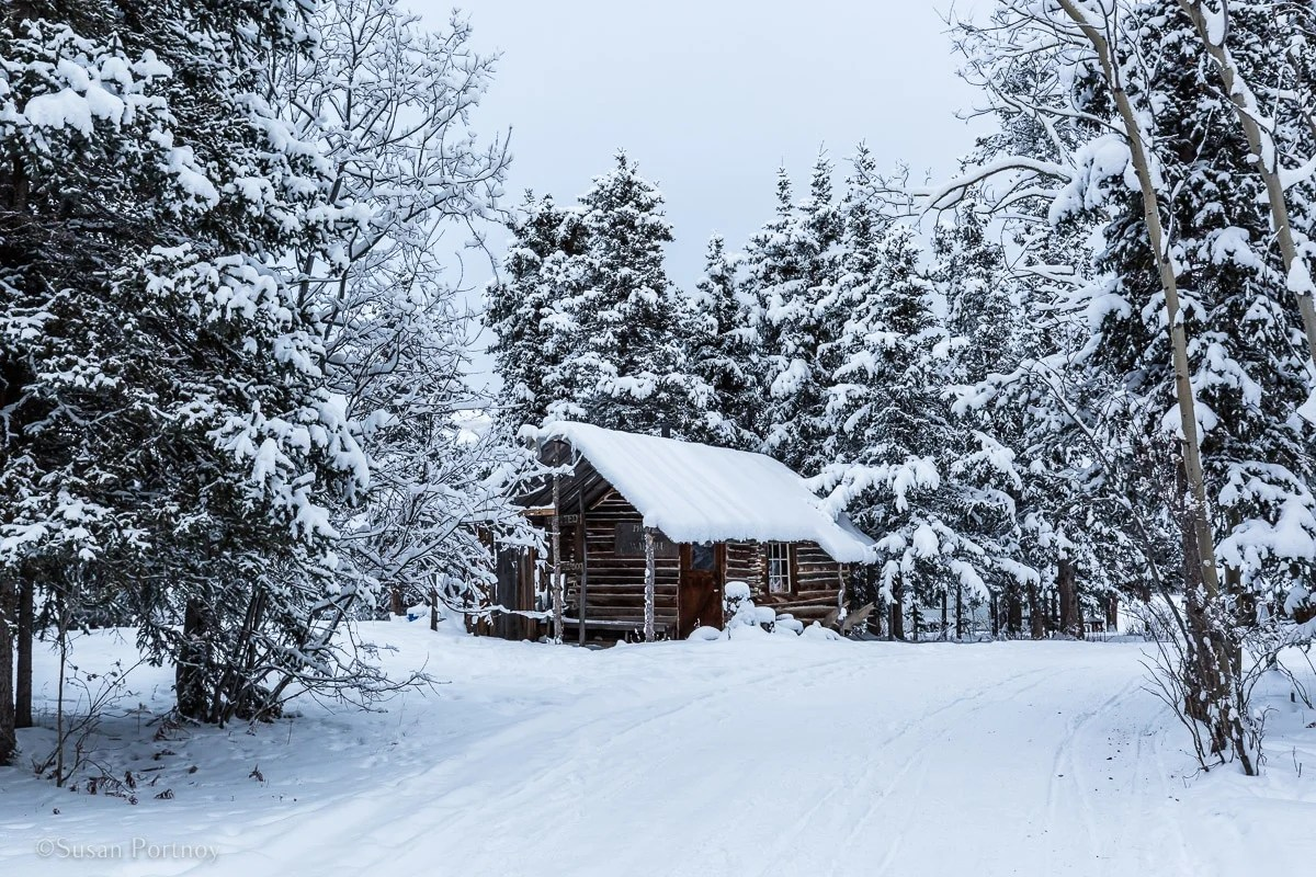 A cabin in Sky High Ranch's winter wonderland for dog sledding in the Yukon