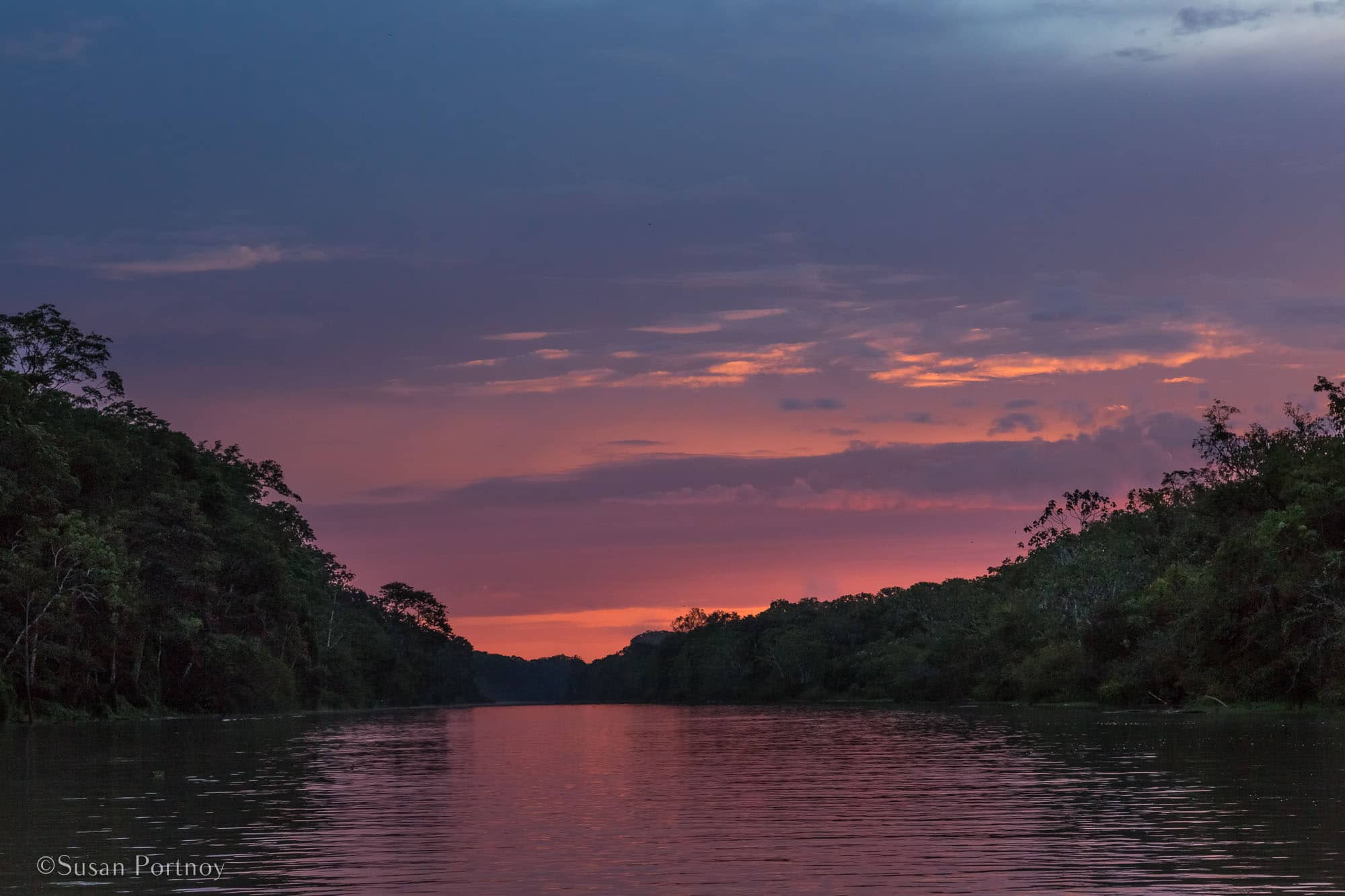 6 Things to Love about a River Cruise on the Amazon