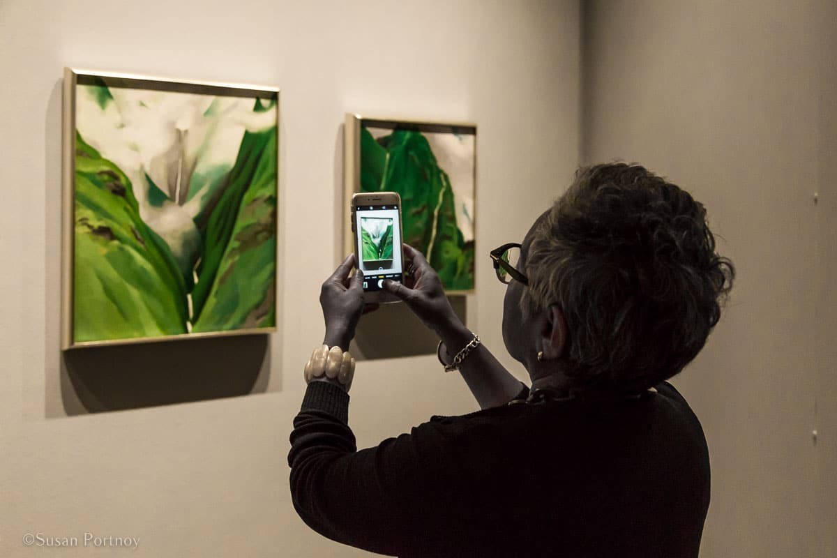 A visitor snaps a photo of Georgia O'Keefe's Waterfall, No. 3 --Spend a Perfect Day at the New York Botanical Garden-163520180515
