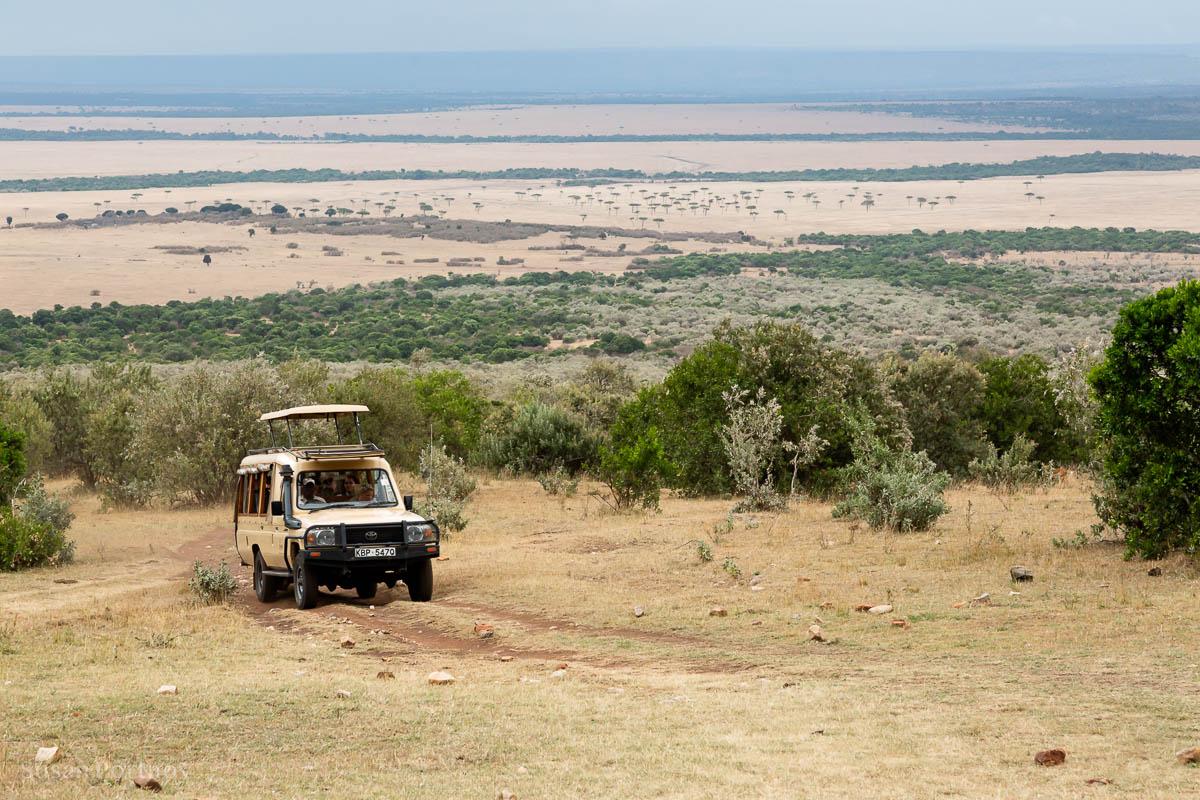 Masai Mara - How to Experience More Beyond Kenya's Big Five -8070