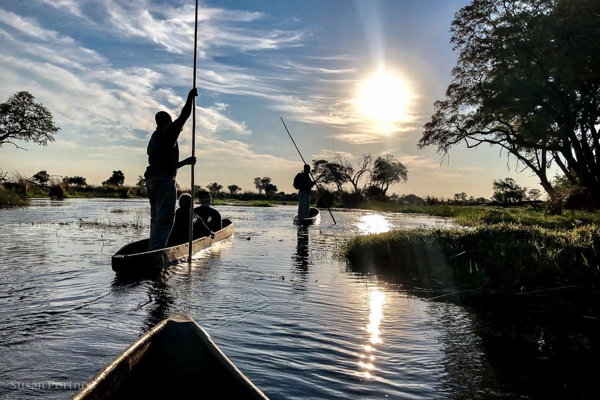A mokoro we will go - Duba Explorers Camp Okavango Delta, Botswana-77432018110901