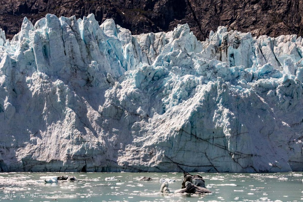 A close-up of the Margerie Glacier in Glacier Bay. - Lessons Learned on an Alaskan Cruise -165620180604