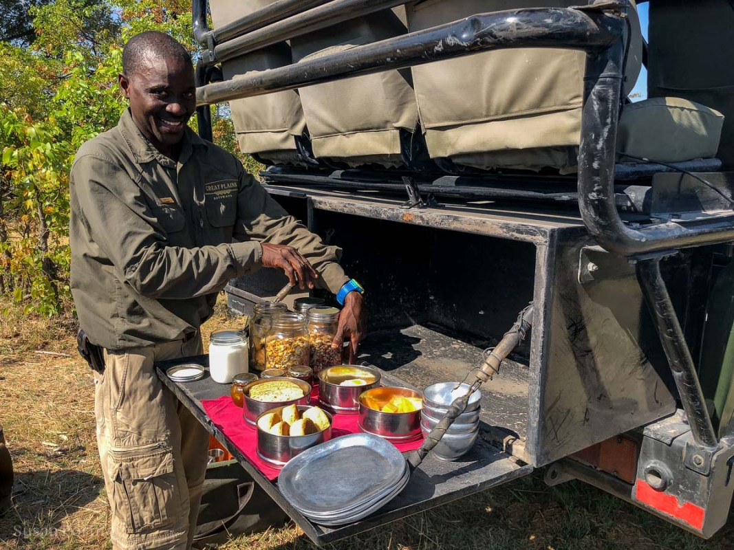 Doctor putting out breakfast in the bush