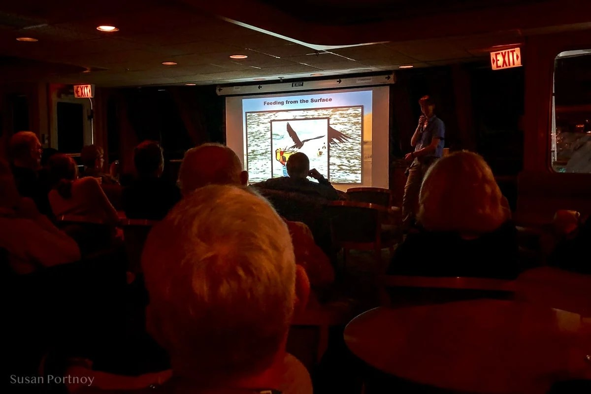 Mareth, UnCruise guide gives a talk on birds