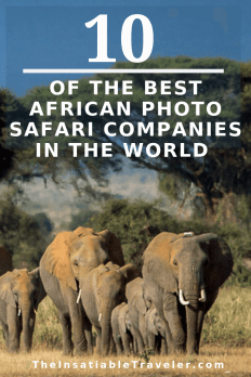 Ten-of-the-Best-African-Photo-Safaris-in-the-World-1