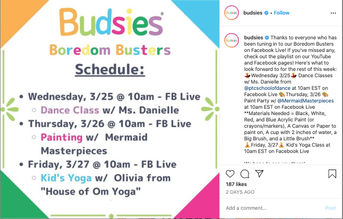 Budsies list of Boredom Busters on Instagram