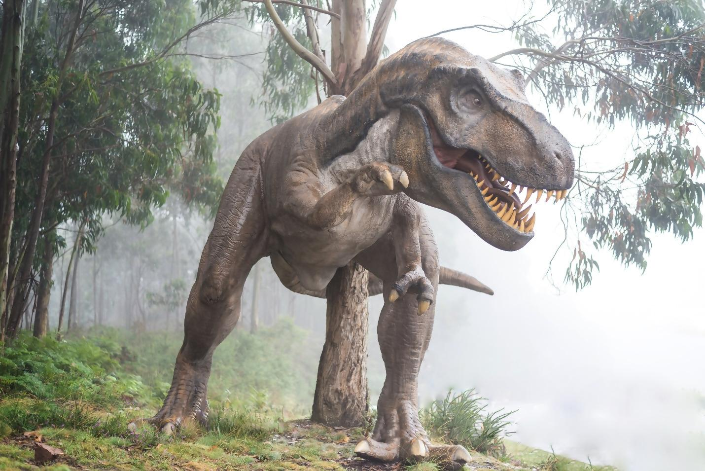 Interesting Facts About Dinosaurs