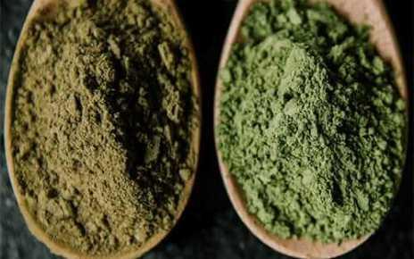 guide to Green Malay Kratom