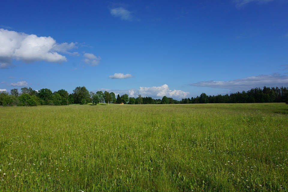 Buy Cheap Land in the US