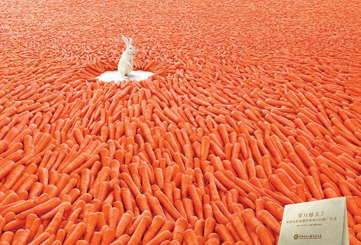 Canton Fair Carrots Advertisement