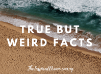 True but weird facts