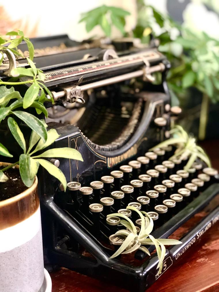 vintage typewriter and plants in The Inspired Garden's Maplewood studio