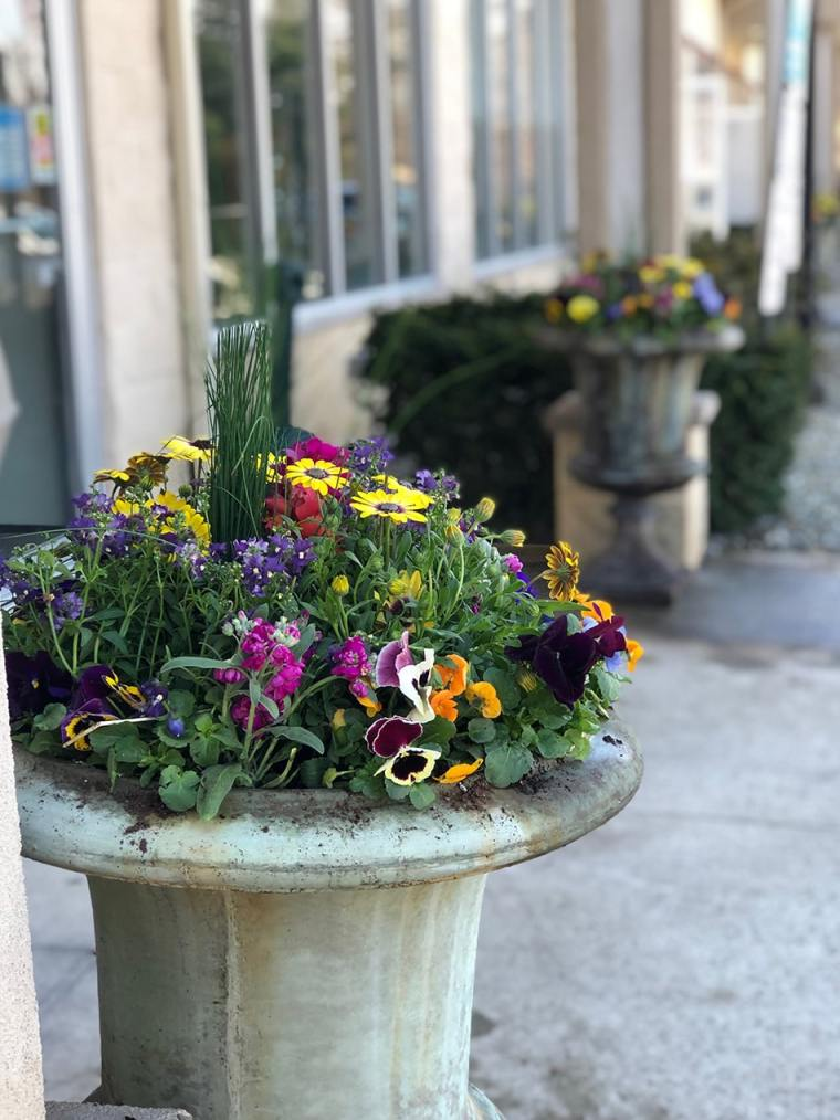 Business garden example by Inspired Garden Maplewood New Jersey