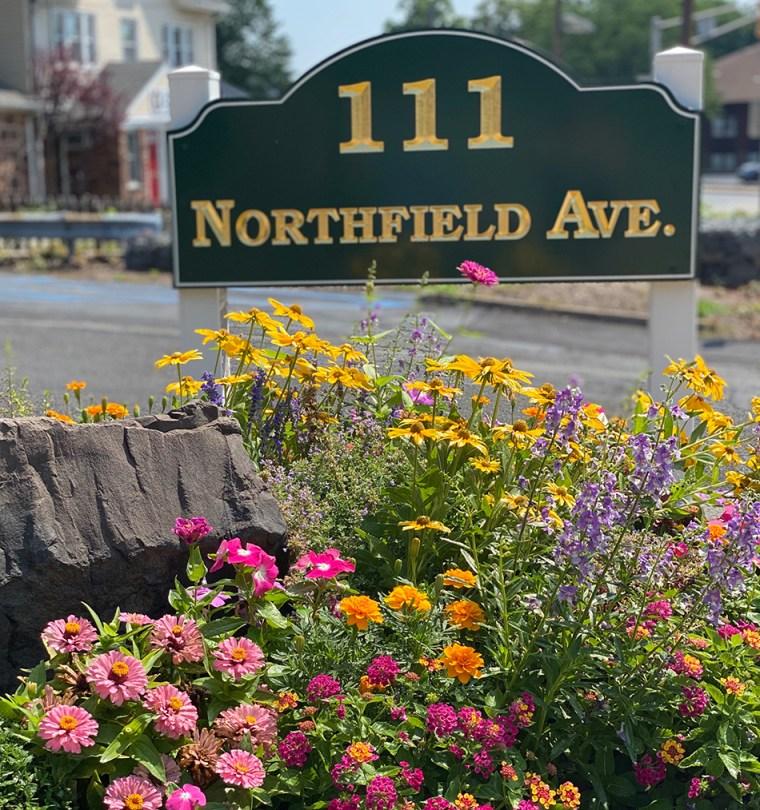 flowers at business garden in West Orange New Jersey