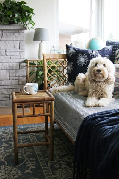 The Inspired Room - Rattan Table - Lily the Labradoodle