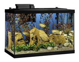 Tetra 20 Gallon Complete Aquarium Kit w/Filter Heater LED & Plants