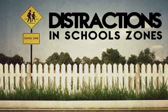 Dis in School Zones-min