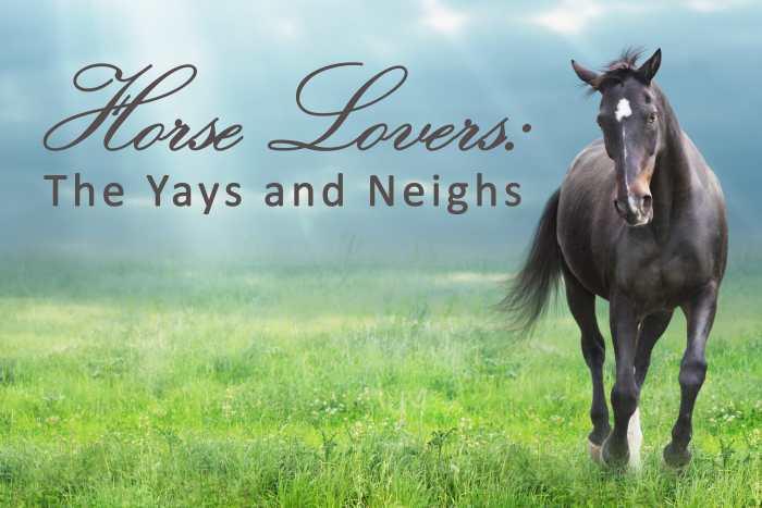 Horse Lovers-min