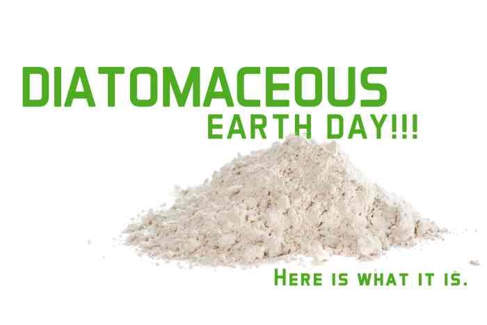 It's Diatomaceous Earth Day-min