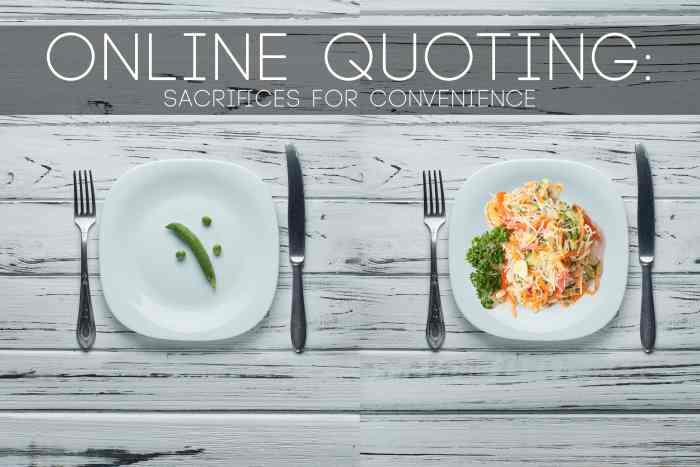 Sacrifices for Convenience-min