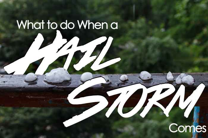 What to do When a Hail Storm Comes-min