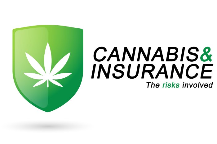 cANNABIS-AND-iNSURANCE