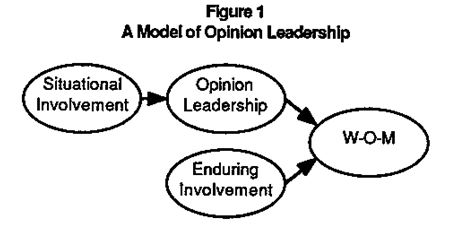 model-of-opinion-leadership
