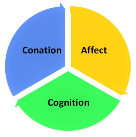 Tri-Component-Attitude-Model-theintactone.jpg