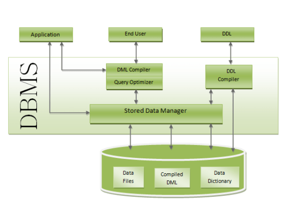 2 structure-of-dbms.png