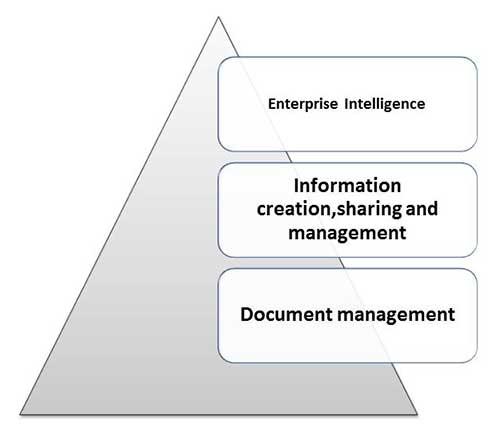 5 level_knowledge_management.jpg