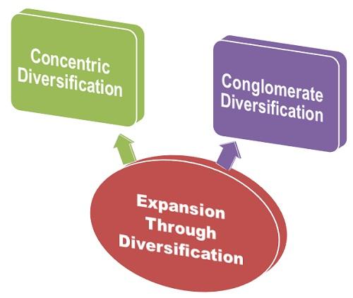 6 Expansion-through-diversification.jpg