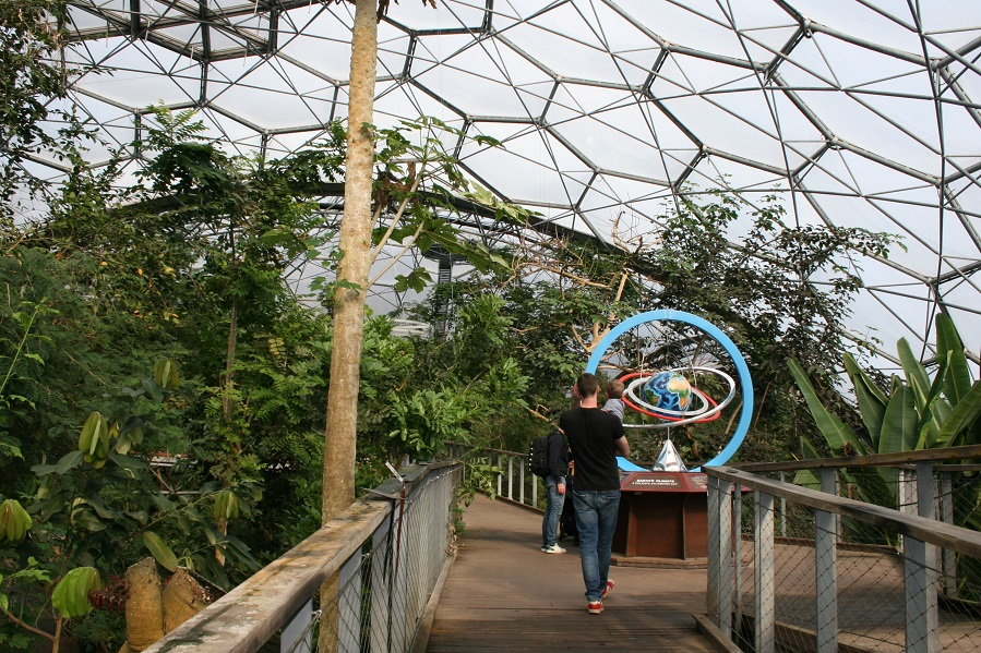 A peek inside The Eden Project's tropical biome. Copyright: The Intelligent Miner
