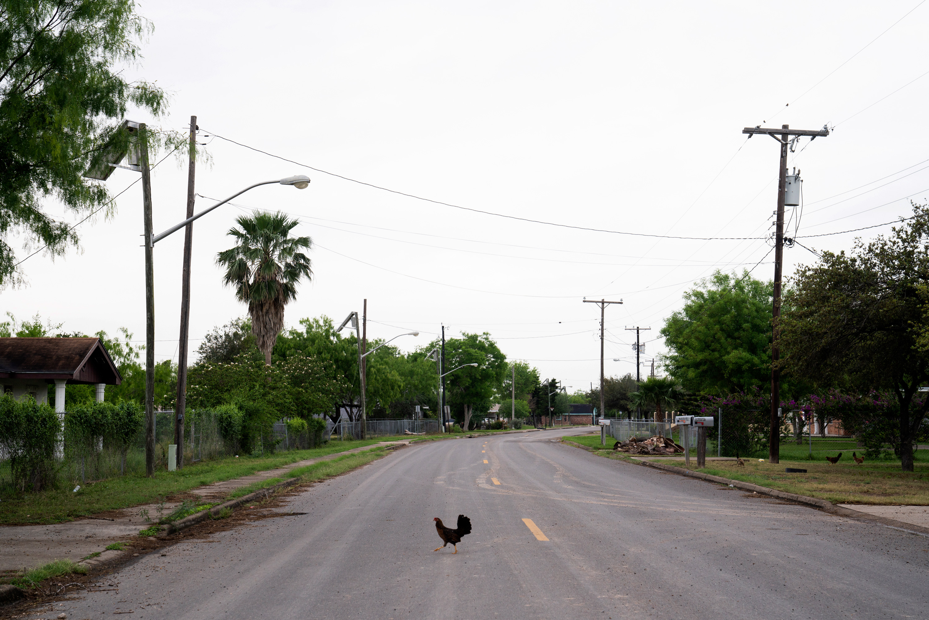 The City of Granjeno is an area that is a historical anthropological Carrizo settlement.Photo: Verónica G. Cárdenas for The Intercept