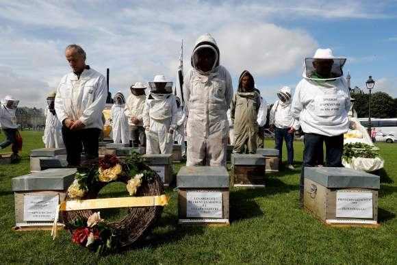 Beekeepers take part in a demonstration at the Esplanade des Invalides in Paris on June 7, 2018, during a national day of action of French beekeepers. - The National Union of French Apiculture (Union Nationale de lApiculture Francaise - UNAF) and the French Federation of Professional Beekeepers (Federation Française des Apiculteurs Professionnels - FFAP) have called for a national day of action to ask the State and the President of the Republic to launch an exceptional support plan for French beekeepers and to restore a viable environment for bee colonies and pollinators. (Photo by FRANCOIS GUILLOT / AFP)        (Photo credit should read FRANCOIS GUILLOT/AFP via Getty Images)