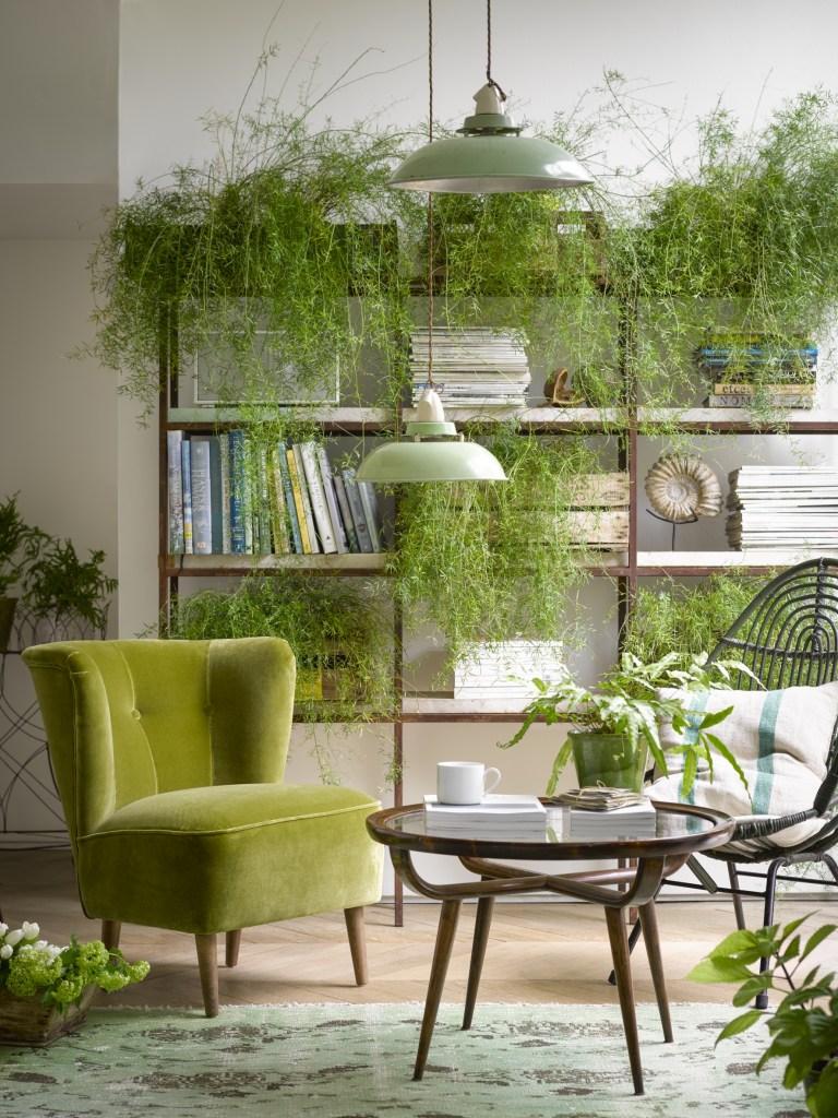 The Big Velvet Home Trend