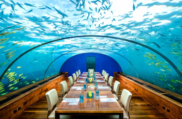 """Dine in truly unique surroundings at """"The most beautiful restaurant in the World"""" (New York Daily News) and enjoy your meal 16 feet below sea level surrounded by teeming marine life"""