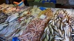 Local market selling fresh fish