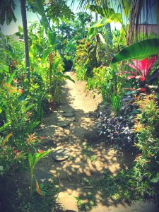 trail-to-villa-ubud