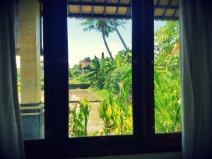 view-from-bedroom-window
