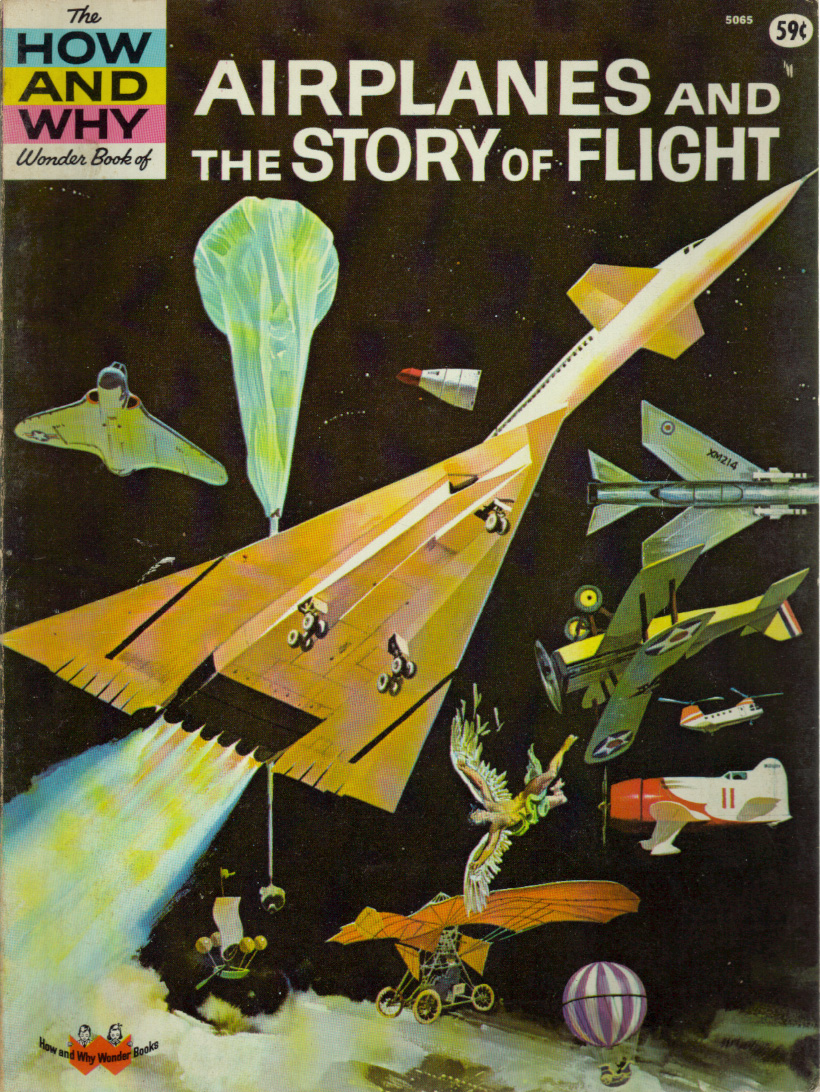 Airplanes and the Story of Flight