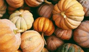 Triple star warming, pain-fighting pumpkin soup