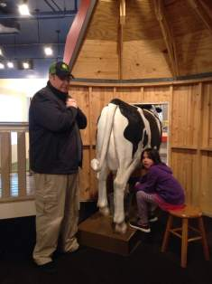 I let Gigi take my turn on the cow. I'm not good at chores. Even when we're at the Phelps Youth Pavilion.