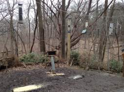 Macbride's Bird Blind provides many feeders to attract the winged residents of the park.