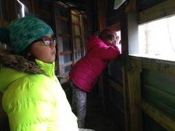 Our first stop was the Bird Blind. A long shelter with benches and enough viewing area carved out of the wall to observe many species of birds that call Lake Macbride home. This is truly one of the most peaceful spot in all of Johnson County where time could slip away unnoticed.