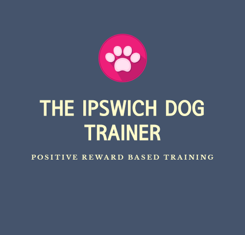 THE IPSWICH DOG TRAINER