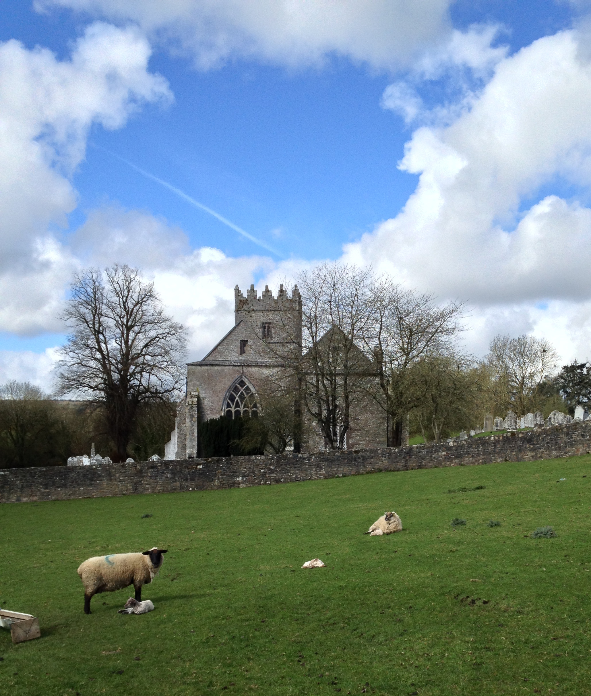 County Carlow, Ireland - Airbnb