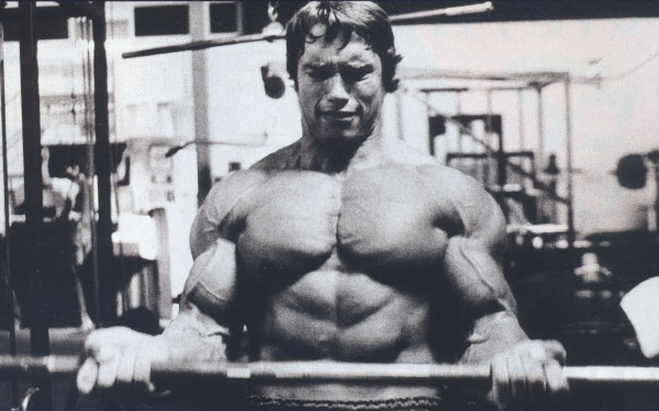 Top 10 Most Famous Bodybuilders of All Time – Iron Witness