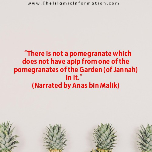 Sunnah about POMEGRANATES